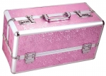 Lockable Vibrator Case (Large) - Pink